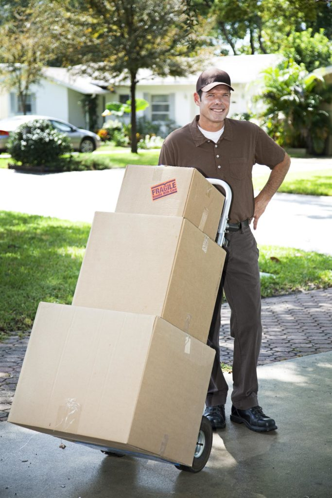 professional-mover-with-boxes